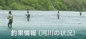 釣果(河川状況)